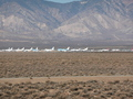 #7: stored aircraft at Mojave airport
