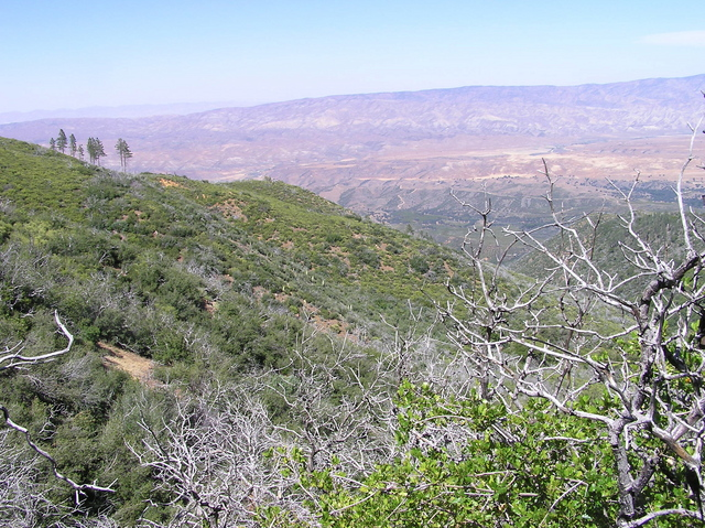 View north (towards the Cuyama Valley)