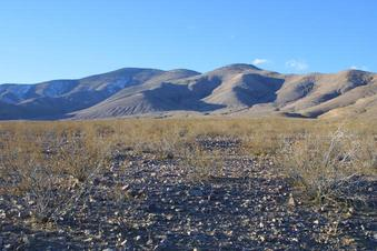 #1: Picture of the confluence taken from SE.  The creosote bush in center foreground marks it pretty well.