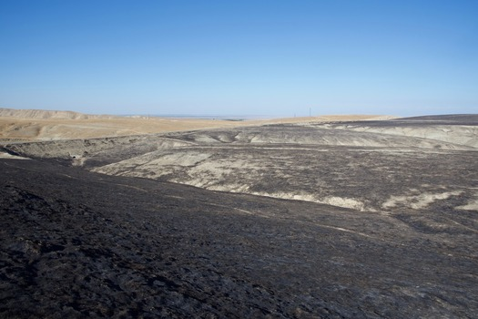 #1: The confluence point lies on a hillside, scorched by a grass fire two months earlier.  (This is also a view to the North, towards Interstate 5 and the Central Valley.)