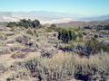 #3: Panamint Valley