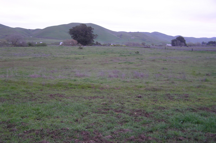 View to the east from the fence.  The confluence is in the middle of this field.