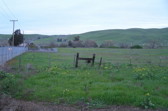 #1: The confluence point is 40 meters to the right of the fence in the middle of this photograph.