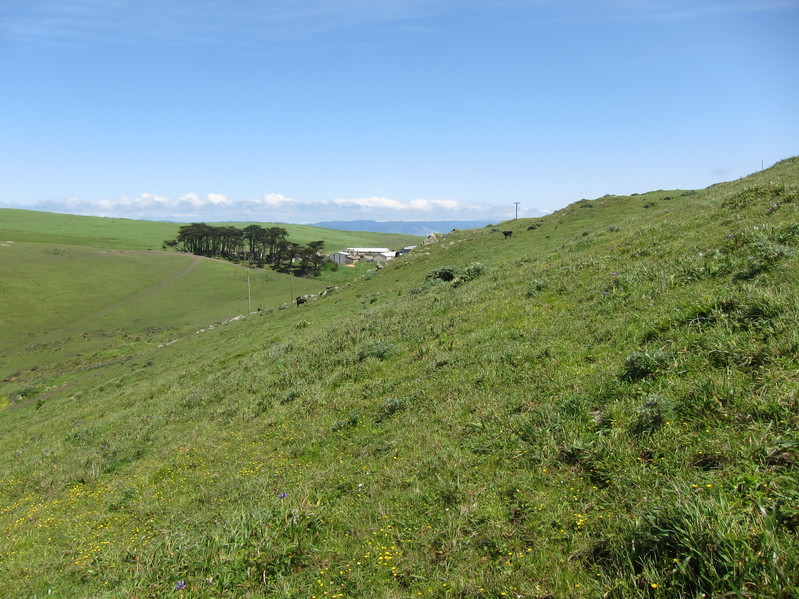 View looking east, towards Ranch A