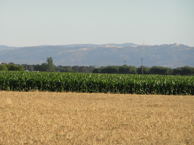 View to the south-southwest from the confluence showing the mountains lining the west edge of the Sacramento Valley.