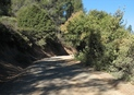 #6: One of the dirt roads leading to the confluence