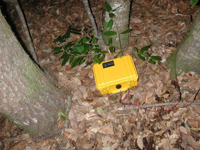 Geocache placed at site