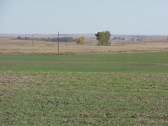 View to the south-southeast from the confluence.