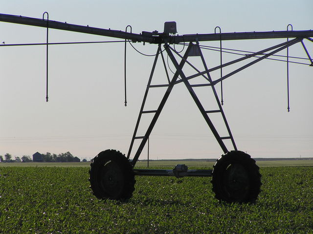 View to the east showing wheels of center pivot irrigation unit.