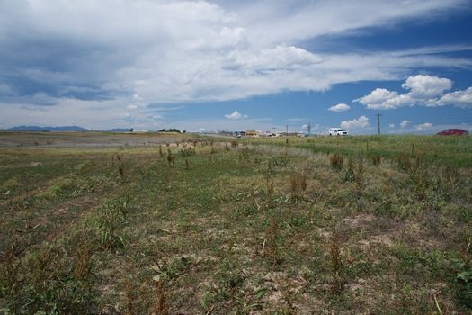 #1: The confluence point lies in an open field, next to Colorado State Highway 7.  (This is also a view to the West, towards the Rocky Mountains.)