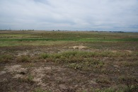 #4: View South.  (How long will this field remain undeveloped?)