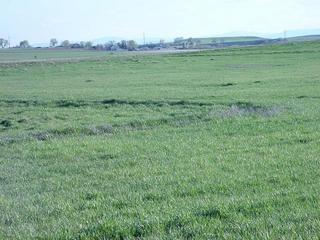 #1: Flat farmland, with mountains in the background.