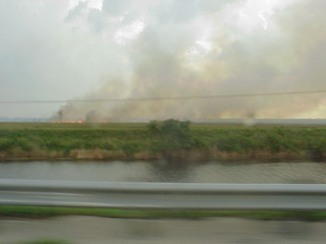 Long line of fires in the Everglades on the way.
