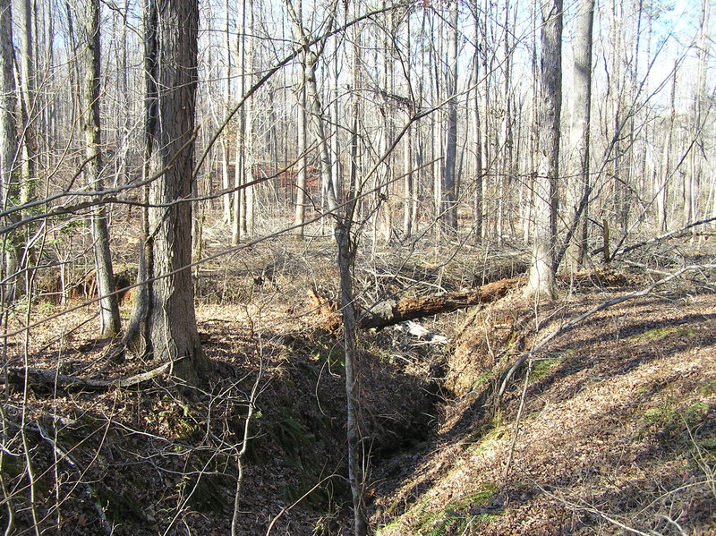 Site of 33 North 84 West.  The confluence is just to the right of the log spanning the ravine.