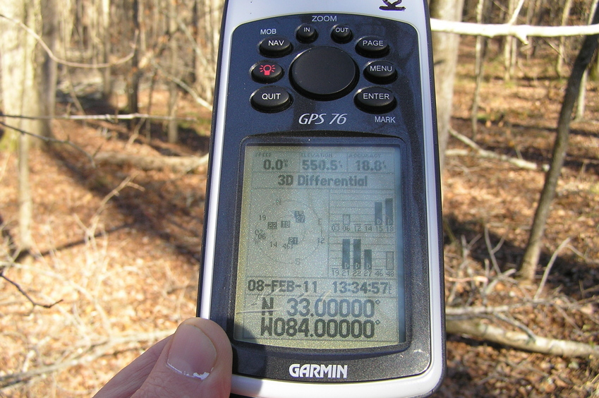 At last!  Difficult-to-obtain all zeroes at the confluence, due to heavy tree cover.
