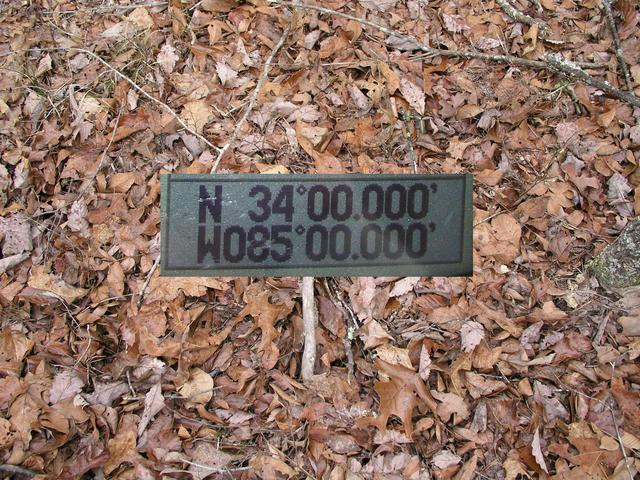 Groundcover with ten zero GPS insert