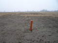 "#5: View due east, showing the ""confluence marker"" that just happens to be about 6 meters east of the confluence."