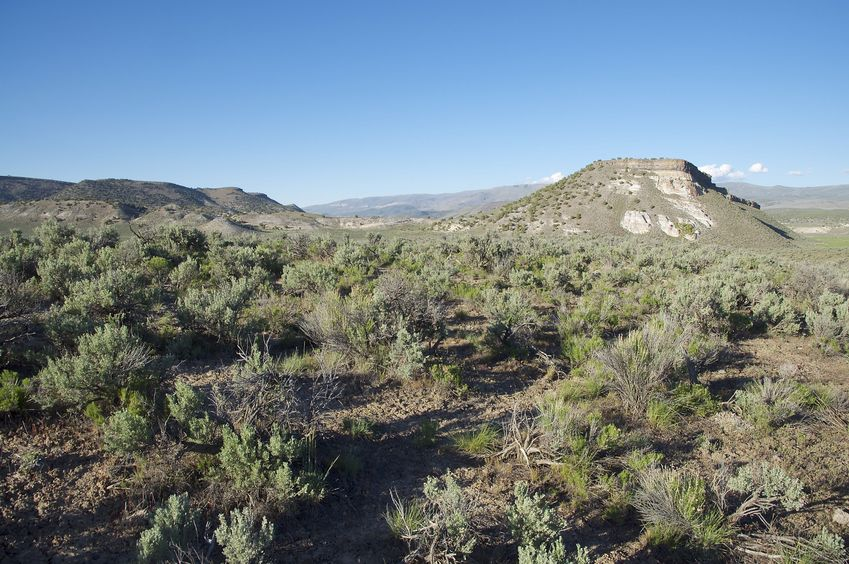 The confluence point lies atop a sagebrush-covered ridge.  (This is also a view to the North.)