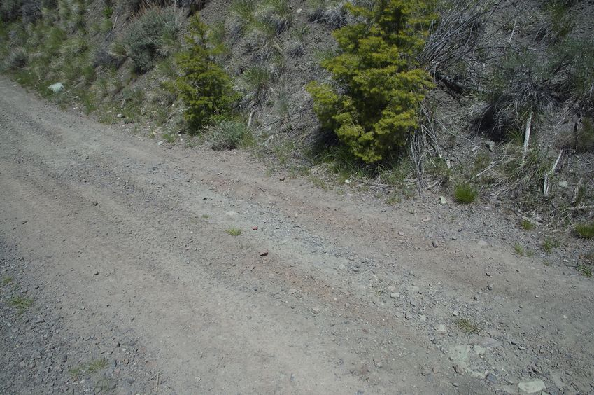 The confluence point lies on this dirt road
