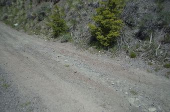 #1: The confluence point lies on this dirt road