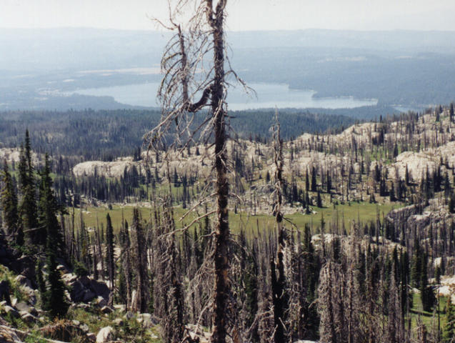 From ridge east of confluence, showing McCall and Payette Lake