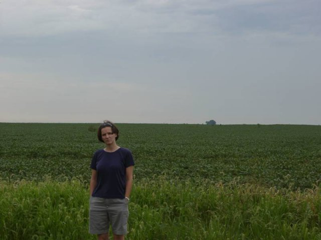 A Soybean Field to the South