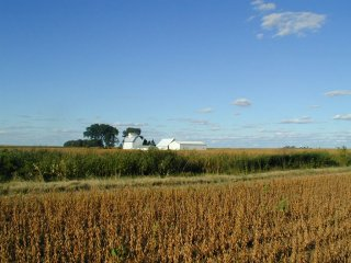 #1: Barns, etc. northeast of confluence