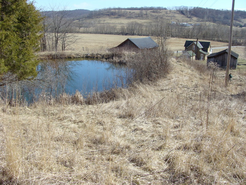 The point is at the left center, in front of the pond.