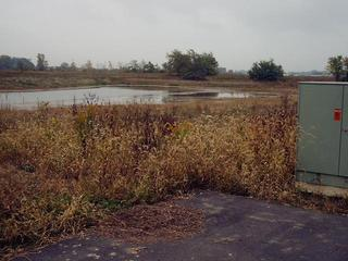 #1: The Swamp of the Confluence, as seen from its Official Parking Space