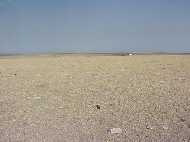 Confluence site with GPS receiver on ground, looking west.
