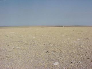 #1: Confluence site with GPS receiver on ground, looking west.