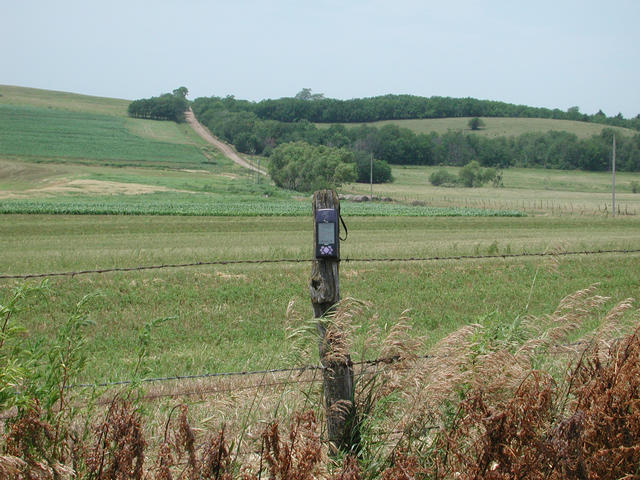 Fence post at the confluence; state-line road in background