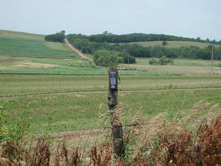 #1: Fence post at the confluence; state-line road in background