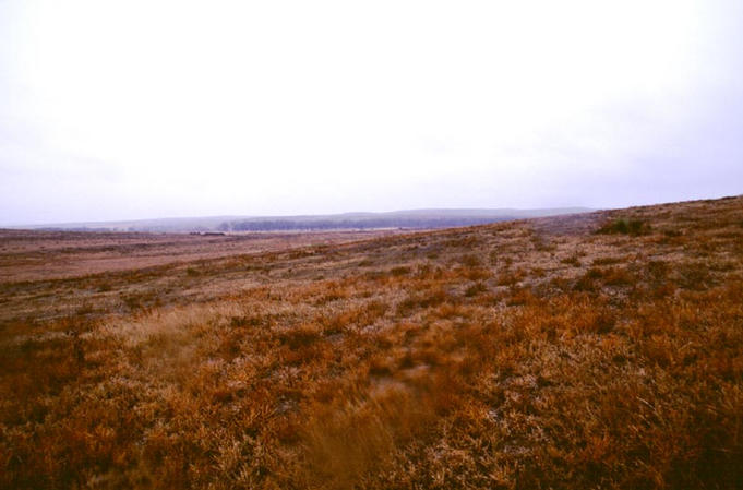 Looking west at more rangeland