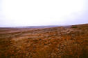 #3: Looking west at more rangeland