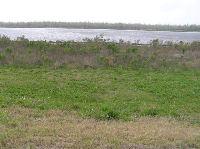 View to the south from the levee:  The Intracoastal Waterway.