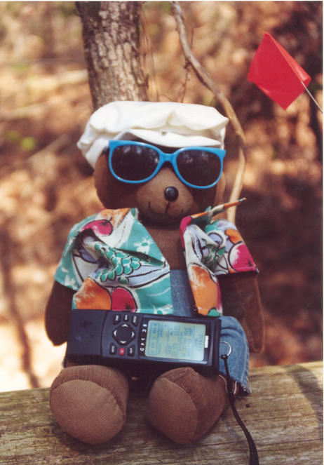 T. McGee Bear holds the GPS while taking a well-deserved rest at the point.