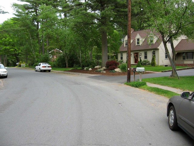 Looking east down Mile Brook Road.