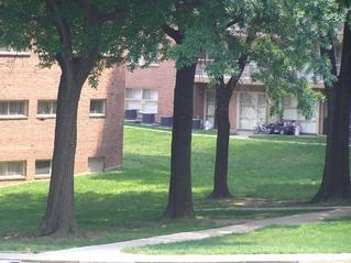 #1: Site of 39 North 77 West from library; the closest approach is the sunny spot behind the left tree.