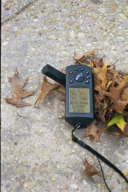 GPS photo with autumn leaves