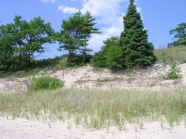 Looking up from the shoreline towards highway 2
