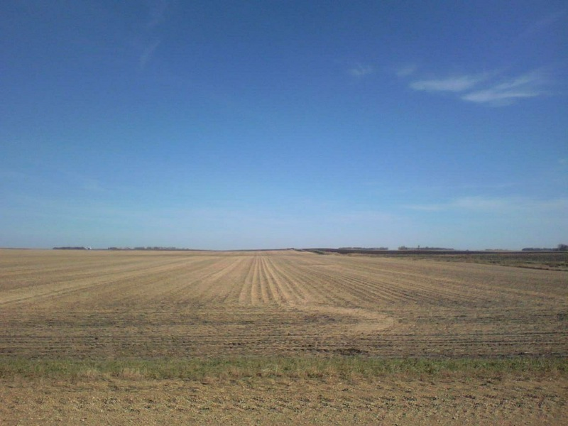 Looking east at a harvested soybean field