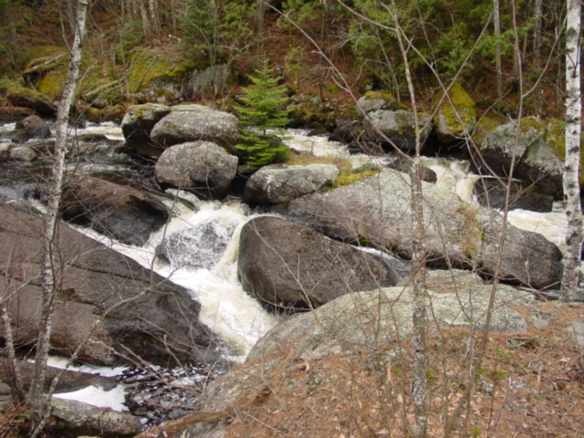 Pretty rapids on way in to Little Saganaga lake