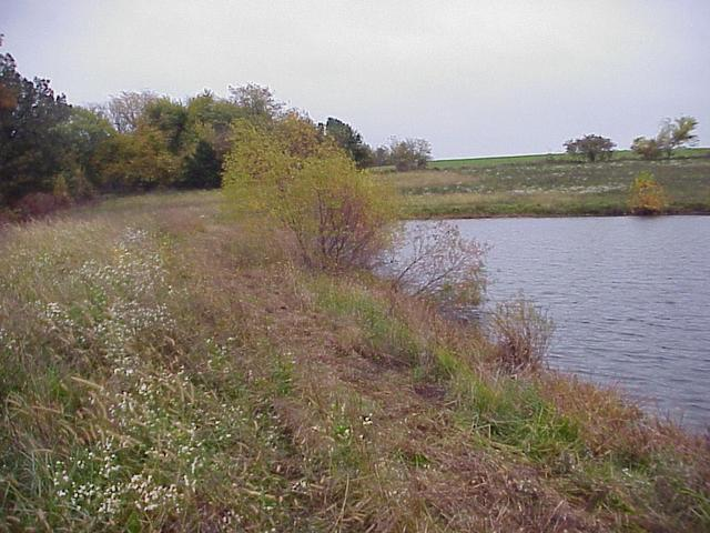 Small reservoir 20 meters south of the confluence.