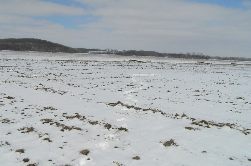 Site of 40 North 95 West, in the mid-distance, seen in the cluster of footprints in the snow, looking northeast.