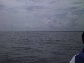 #1: The southern shore of the Albemarle Sound.