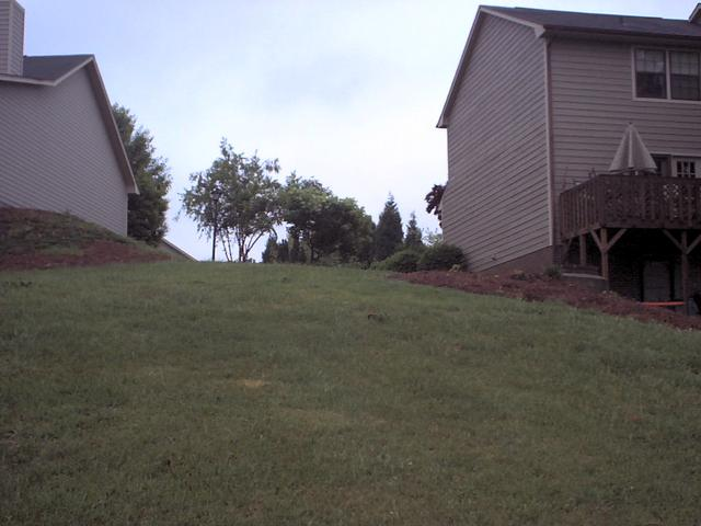 East, looking up a steepish hill