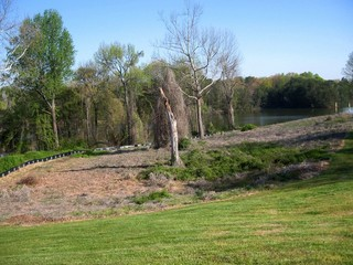 #1: The confluence is in the natural area near the dead tree.  Oak Hollow Lake is in the background.