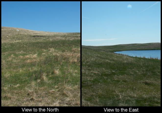 North and East Views