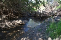 #7: The small creek that runs just to the West of the point